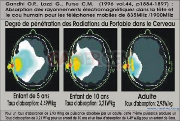 DAS-radiation-telephone-adulte-enfant