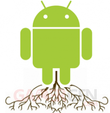 root image