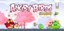 angry-birds-seasons-valentine-edition-android-app