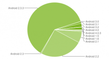 graphique-camembert-fragmentation-statistiques-android-fevrier-2012