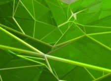 wallpaper_spidergreen